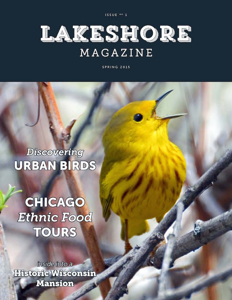 Issue 1: Spring 2015